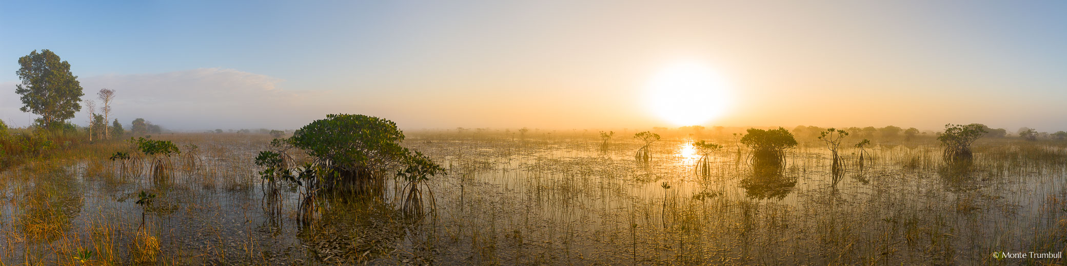 The rising sun burns its way through the last of the fog hanging over a slough filled with red mangroves in Everglades National Park, Florida.