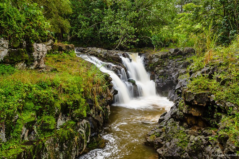 Kaapa Stream emerges from a dense forest canopy and gracefully flows over Upper Hoopii Falls in eastern Kauai, Hawaii.