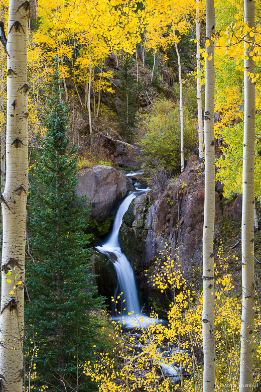 Graceful Nellie Creek Falls is framed by golden aspen trees in the Uncompahgre National Forest outside of Lake City in southern Colorado.
