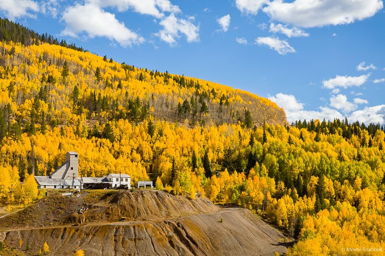 The abandoned ore processing facility in the ghost town of Gilman is surrounded by golden aspen trees at the peak of autumn color in central Colorado.