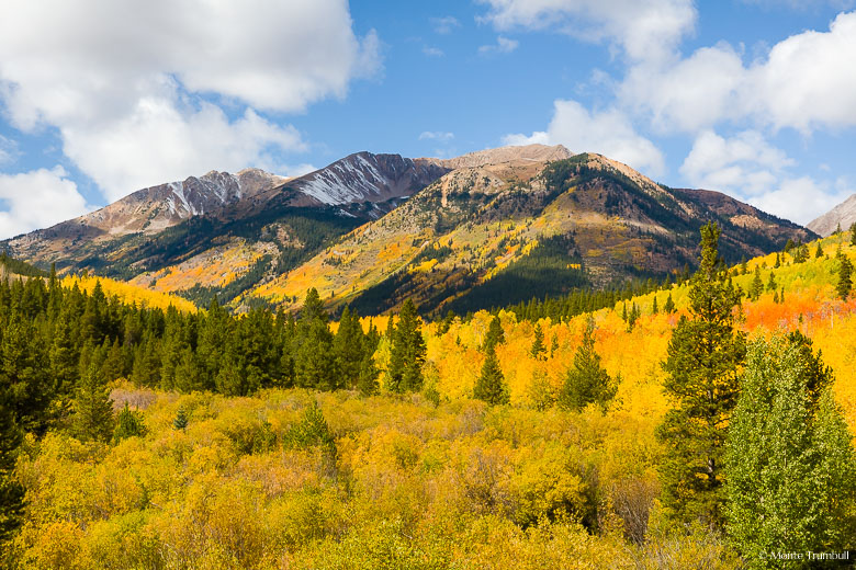 Summer gives way to autumn and Virginia Peak is dusted with snow and the valley below is filled with golden aspens and underbrush in the San Isabel National Forest outside of the old mining town of Winfield.