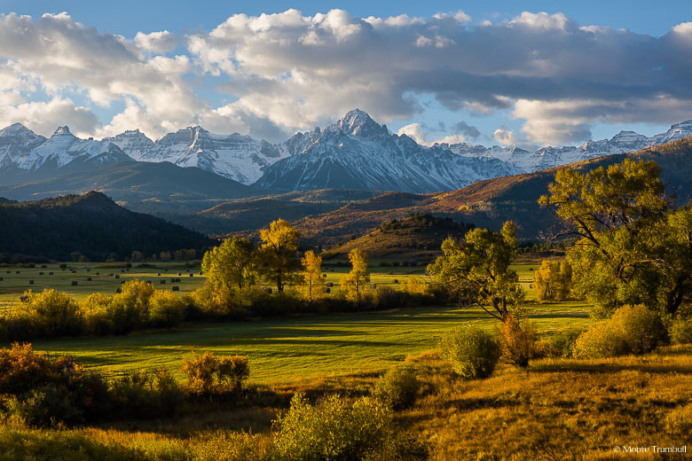A glorious fall scene with early morning sunlight shining on the golden fields of the Double RL Ranch with the snow-covered Mount Sneffels looming in the distance outside of Ridgway, in southwestern Colorado.