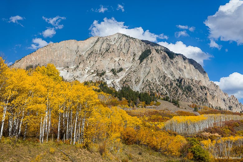 The sheer southwest face of Marcellina Mountain looms over a mountainside covered with golden aspens and rust/orange underbrush along County Road 12 west of Crested Butte, Colorado.