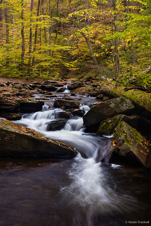 Kitchen Creek twists and turns around boulders as it flows through a golden forest in Ricketts Glen State Park in northeastern Pennsylvania.