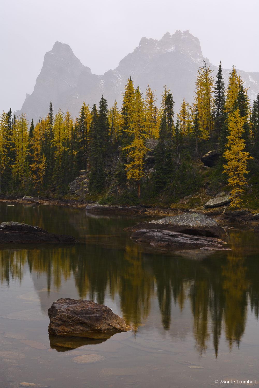 MT-20060920-145541-0080-Canada-Yoho-National-Park-Opabin-Plateau-fall-color-fog-pond-reflection.jpg