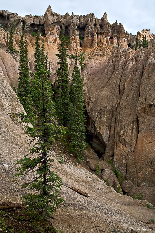 MT-20070727-093141-0029-Edit-Colorado-Wheeler-Geological-Area-rocks-pine-trees.jpg