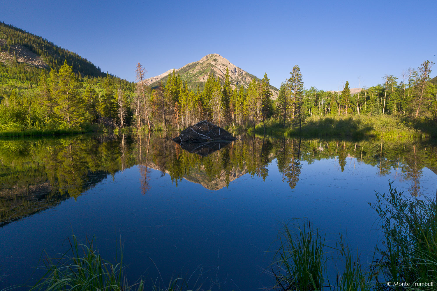 MT-20080716-065950-0011-Colorado-Clear-Creek-Canyon-beaver-pond-reflection-sunrise.jpg