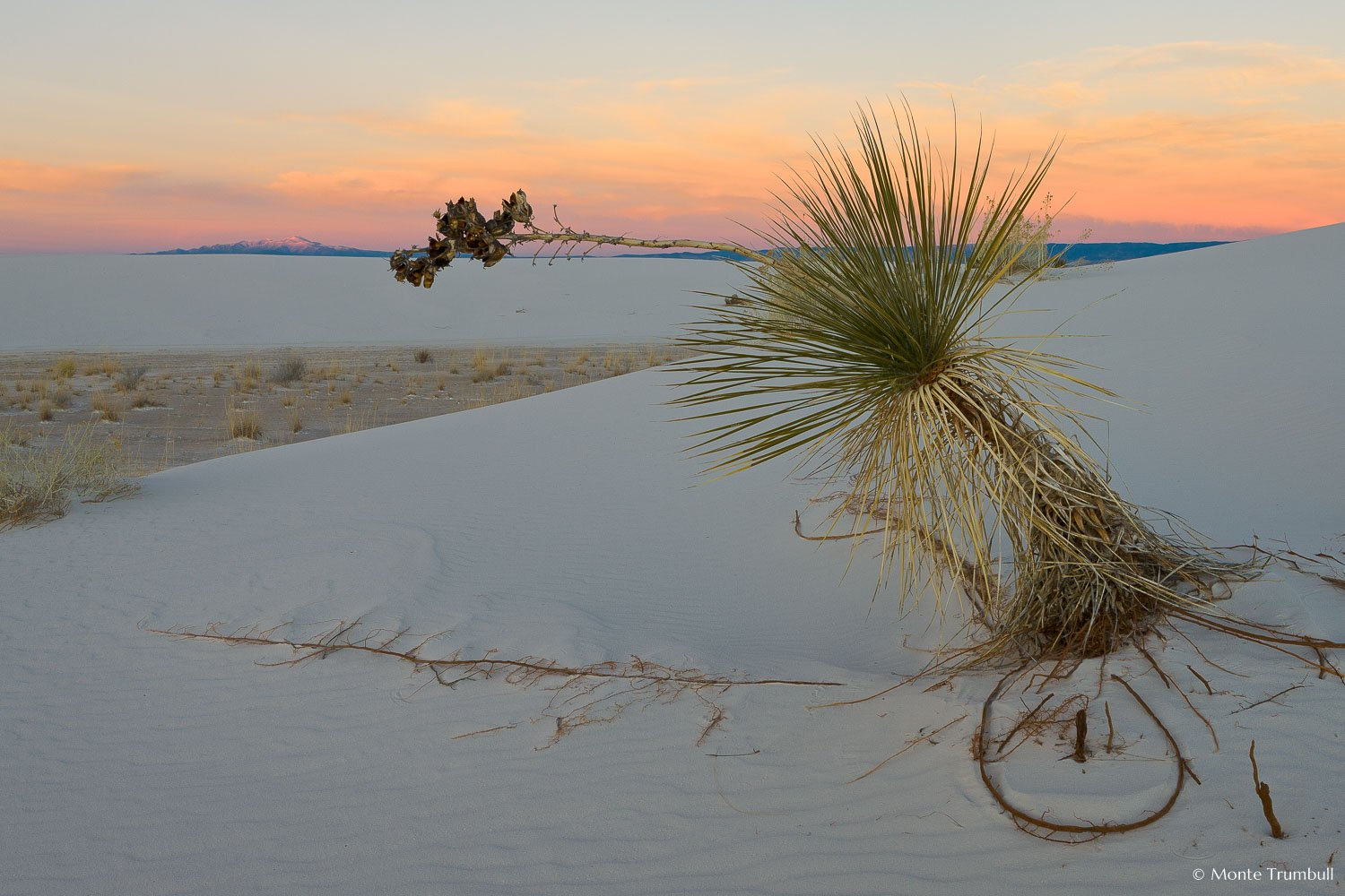 MT-20090107-171519-0011-New-Mexico-White-Sands-National-Monument-yucca-sunset-mountains.jpg