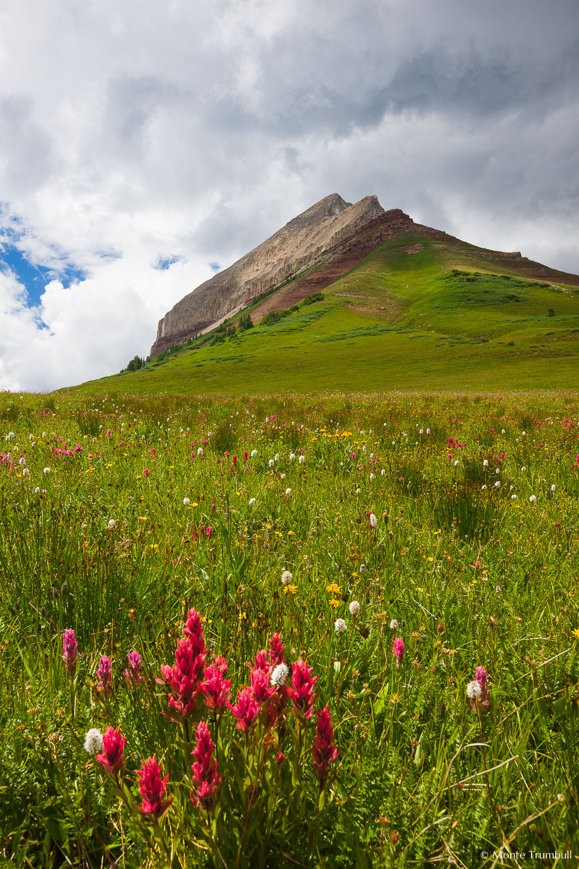 MT-20100725-130424-0023-Colorado-Engineer-Mountain-wildflowers-storm.jpg