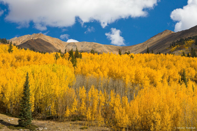 MT-20111002-105348-0025-Colorado-Irvin-Peak-Mount-Blaurock-fall-color.jpg