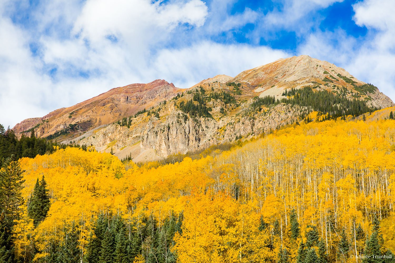 MT-20151002-104120-0018-Colorado-golden-aspen-Leahy-Peak-autumn.jpg