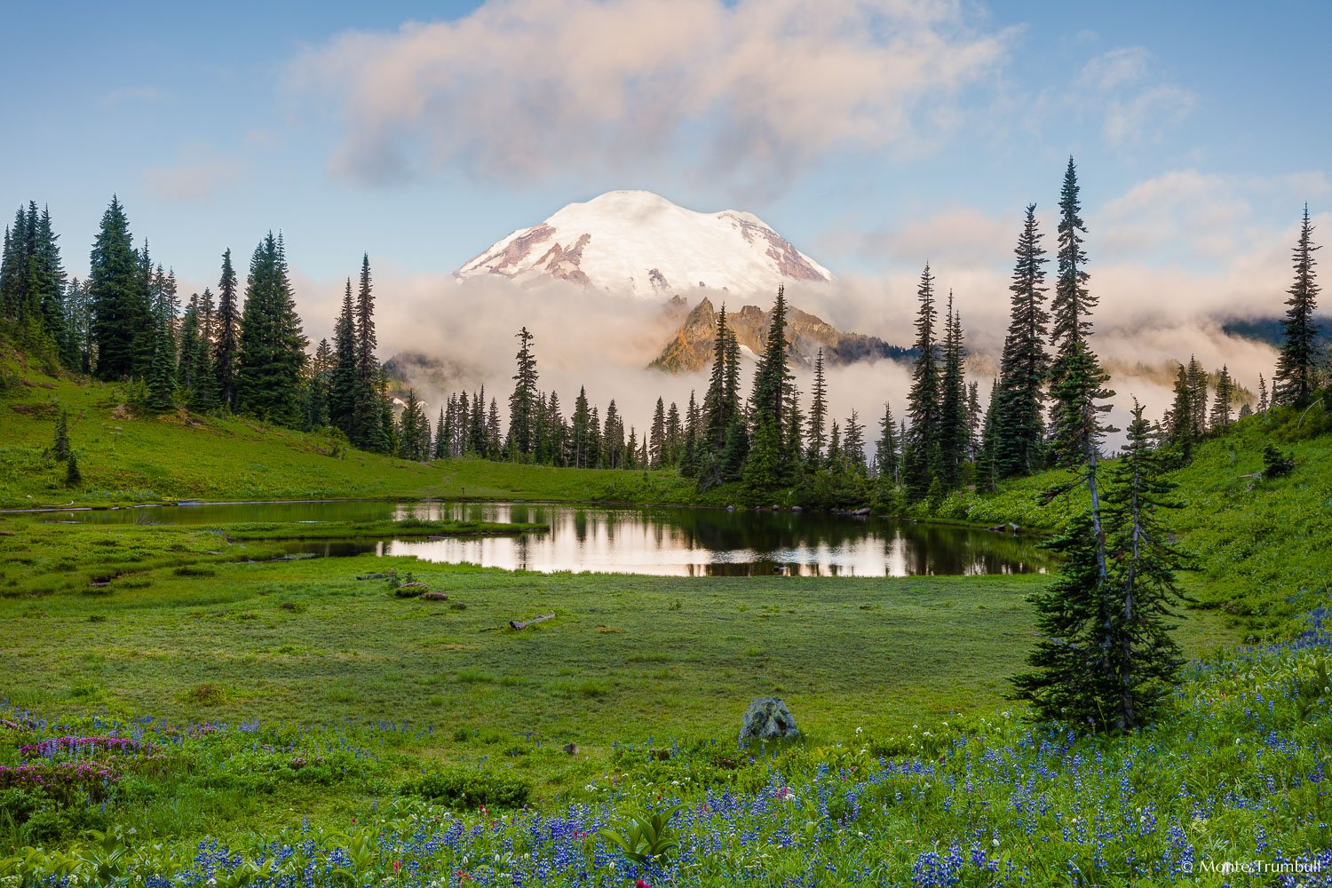 "hispanic singles in mount rainier Immigration update ""america the  petrified forest and mount rainier national parks  shortly after winning her first professional singles title in orlando, ."