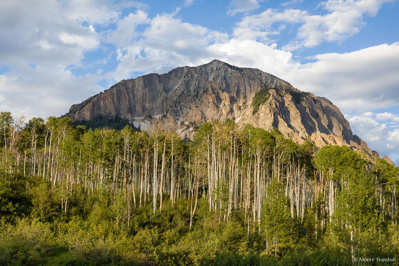MT-20170620-194131-0006-Marcellina-Mountain-Aspen-Spring-Crested-Butte-Colorado.jpg