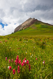 MT-20100725-130424-0023-Colorado-Engineer-Mountain-wildflowers-storm.jpg