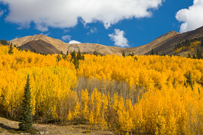 MT-20111002-105348-0025-Colorado-Irvin-Peak-Mount-Blaurock-fall-color.jpg