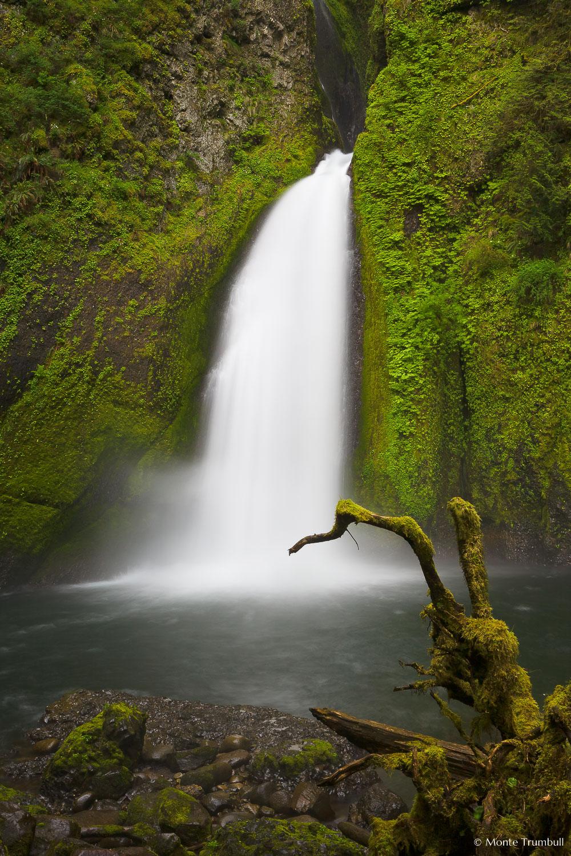 MT-20070510-054723-0007-Oregon-Columbia-Gorge-Wahclella-Falls.jpg