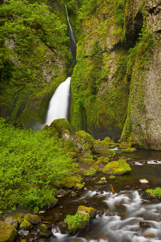 MT-20070510-055221-0008-Oregon-Columbia-Gorge-Wahclella-Falls.jpg