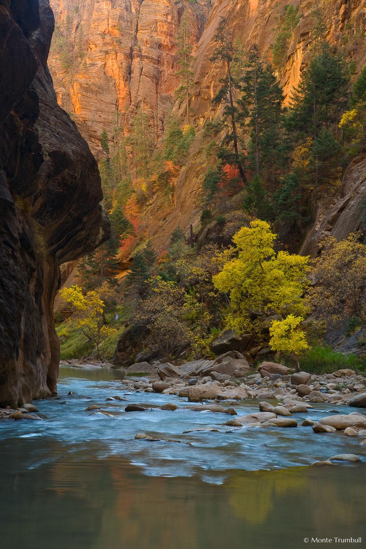 MT-20071104-124529-0016-Edit-Utah-Zion-National-Park-Narrows-fall-color.jpg