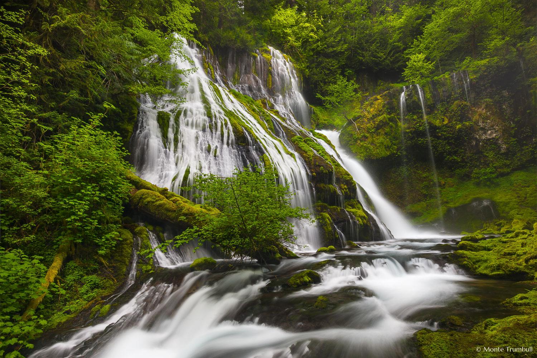 MT-20130519-082937-0008-Panther-Falls-Washington-spring.jpg