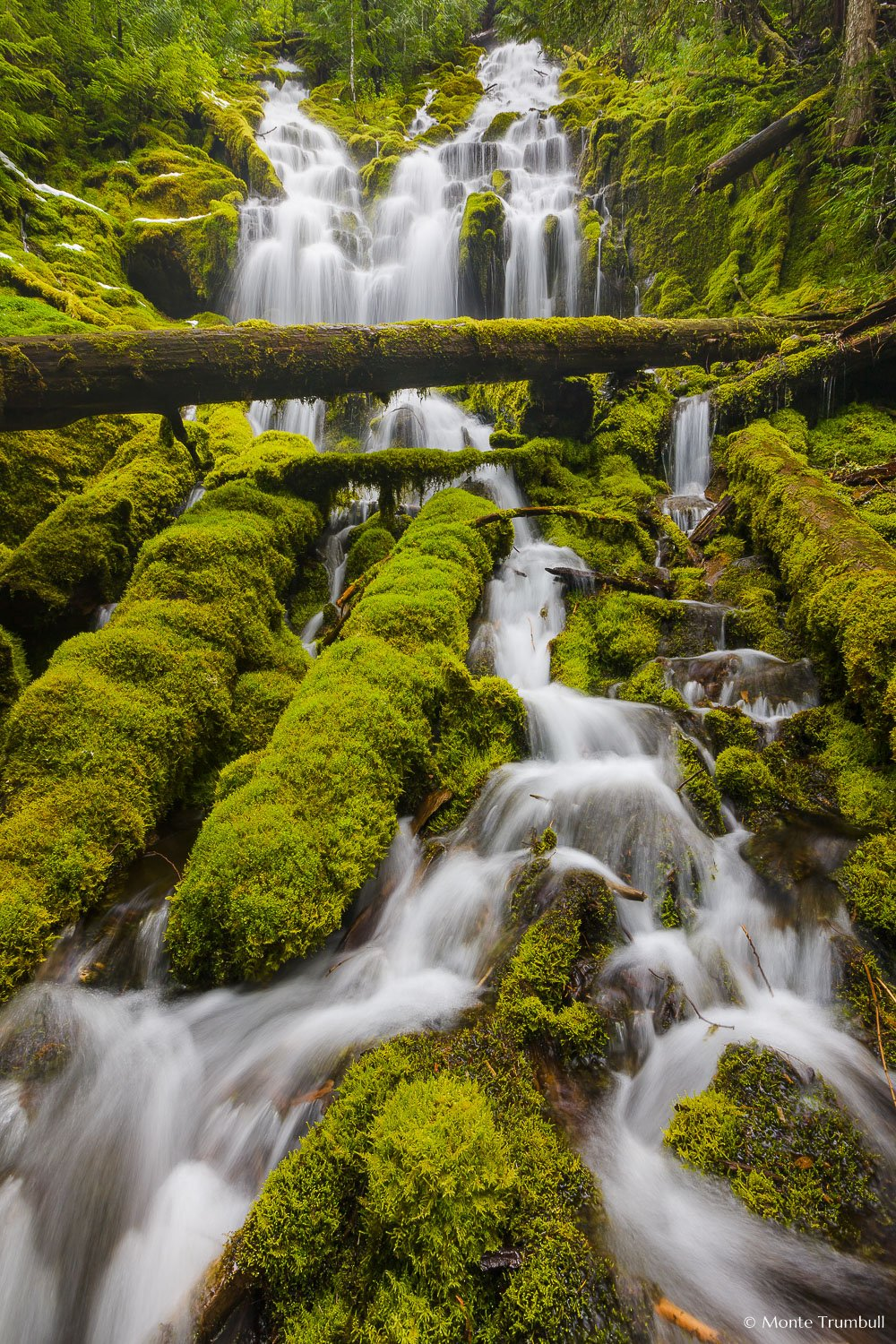 MT-20130523-153511-0069-Upper-Proxy-Falls-Willamette-National-Forest-Oregon-spring.jpg