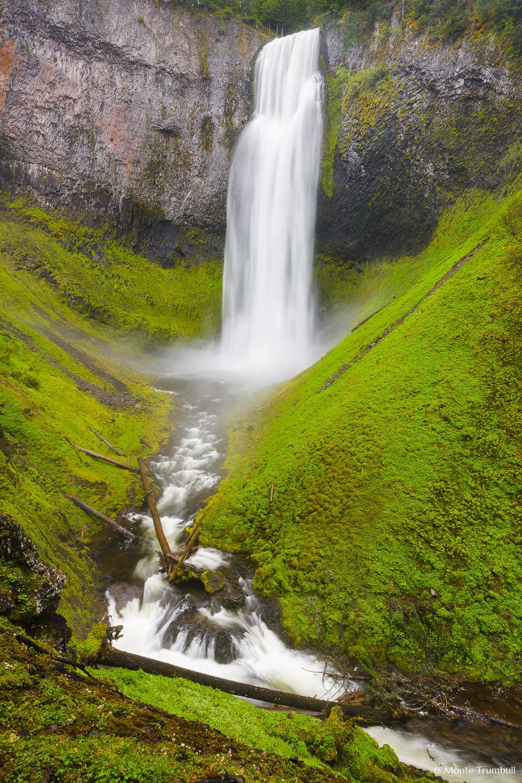MT-20130526-164627-0054-Salt-Creek-Falls-Willamette-National-Forest-Oregon-spring.jpg