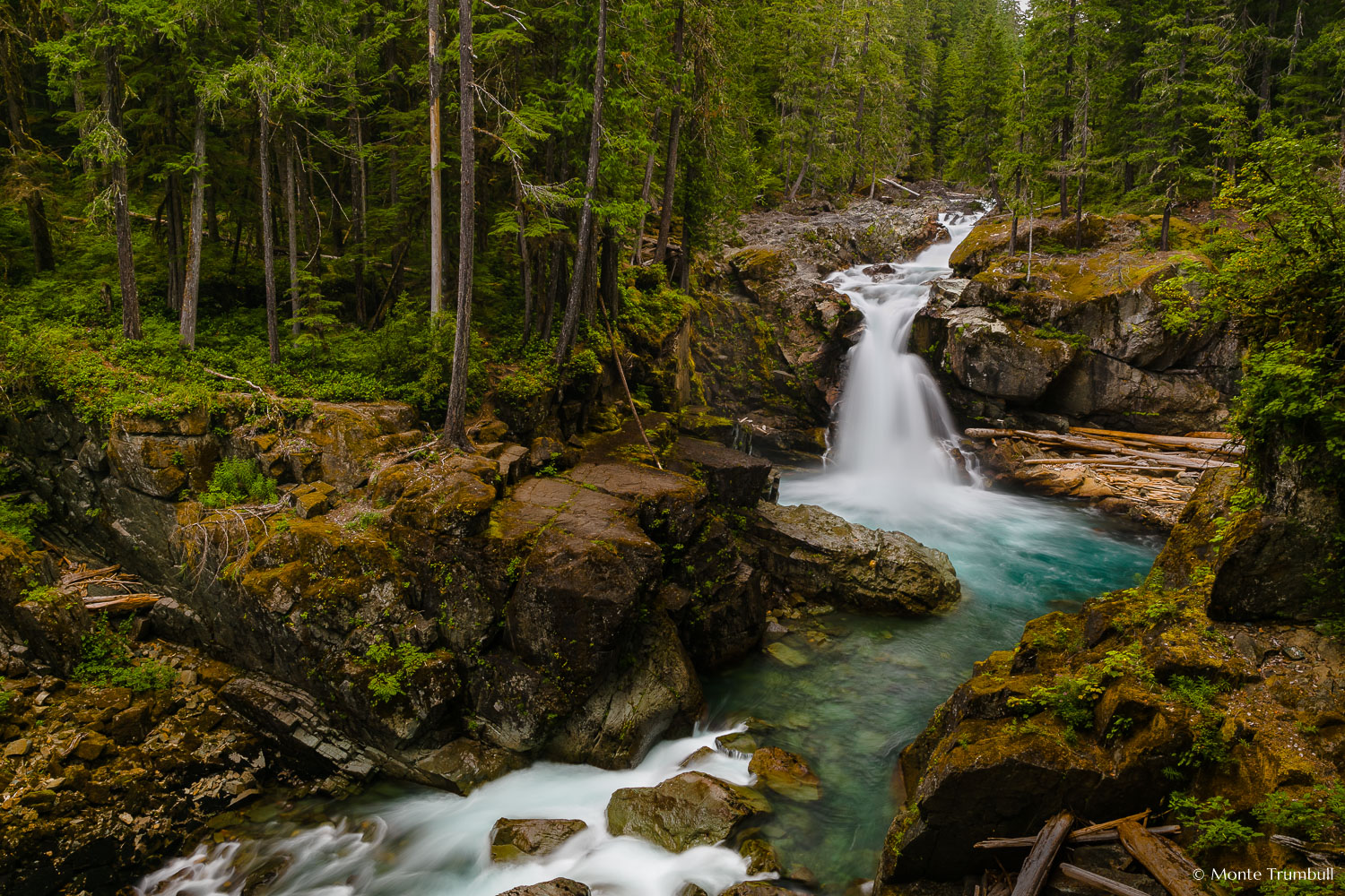 Woodland Serenity - The Ohanapecosh River winds through a dense green forest and drops over Silver Falls into an aquamarine colored pool in Mount Rainier National Park, Washington.