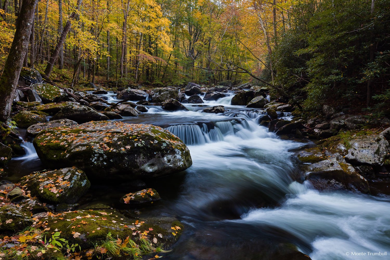 MT-20171031-083236-0008-Autumn-Middle-Prong-Little-River-Great-Smoky-Mountains-National-Park-Tennessee.jpg