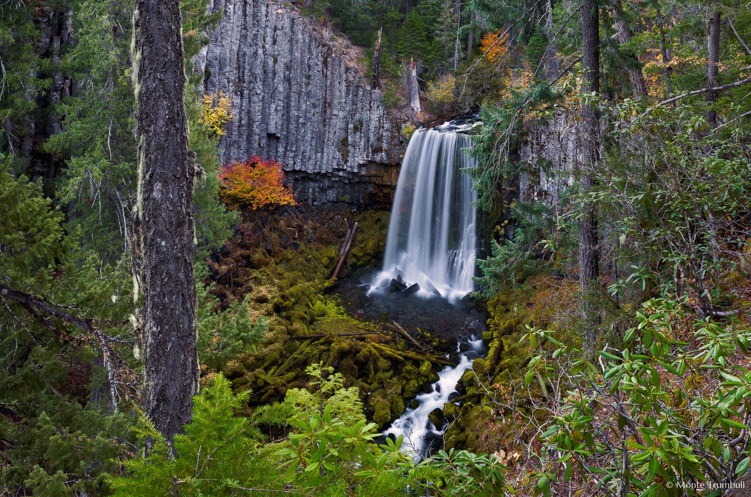 MT-20181020-082834-0018-Warm-Springs-Falls-Umpqua-National-Forest-Oregon-Autumn.jpg