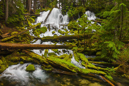 MT-20130529-145754-0059-Clearwater-Falls-Umpqua-National-Forest-Oregon-spring.jpg