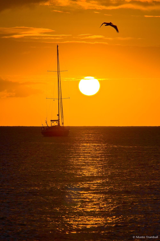 MT-20080218-181053-Anguilla-Road-Bay-sunset-sailboat.jpg