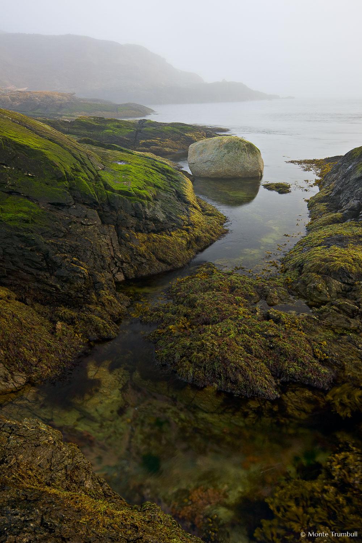 MT-20080409-072700-0008-Edit-Washington-San-Juan-Islands-fog-rock.jpg