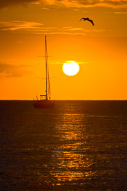 MT-20080218-181053-Anguilla-Road-Bay-sunset-sailboat.jpg