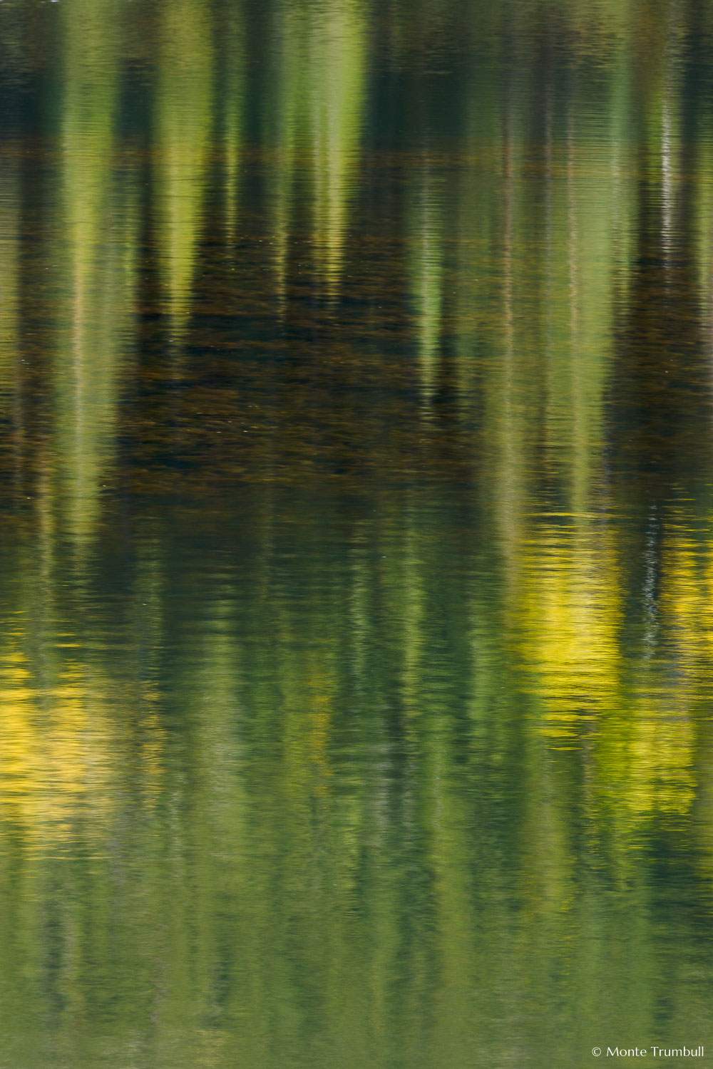 MT-20081008-165238-0108-Colorado-Woods-Lake-reflection-gold-green.jpg