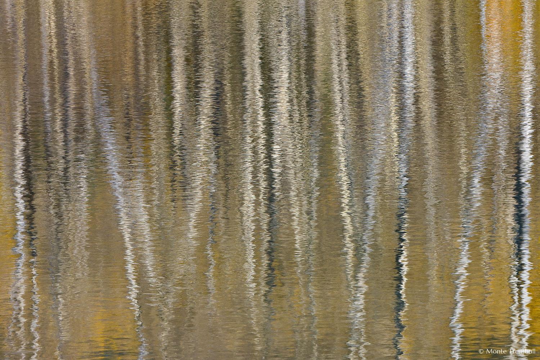 MT-20081008-165448-0110-Edit-Colorado-Woods-Lake-reflection-aspen-gold.jpg