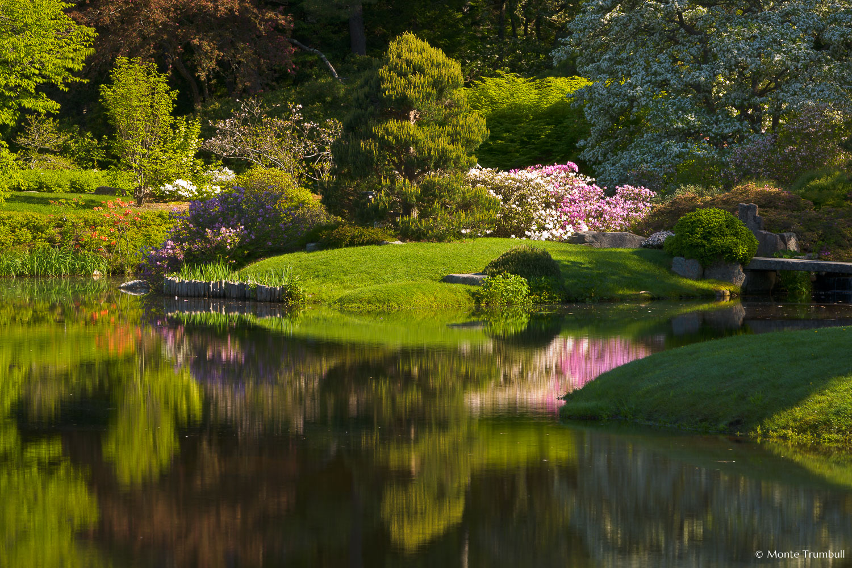 MT-20110607-081702-0021-Maine-Asticou-Azalea-Garden-reflection.jpg