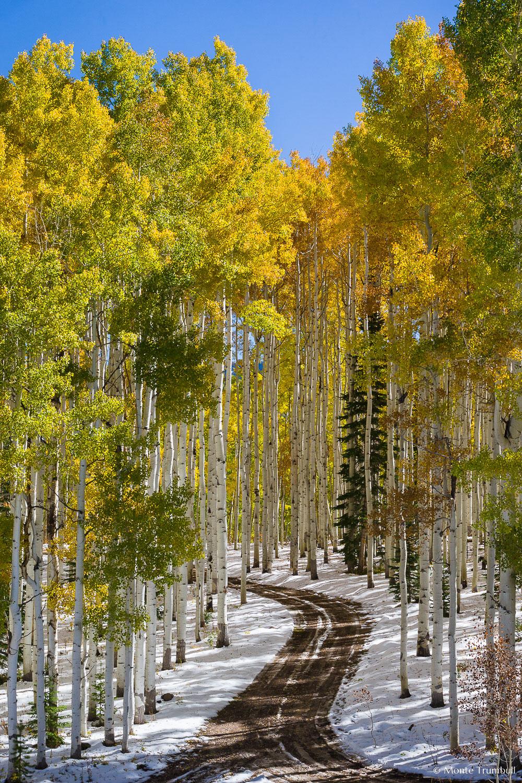 MT-20131007-121952-0028-Flat-Top-Mountains-aspen-snow-road-fall.jpg
