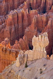 MT-20071108-081300-0057-Edit-Utah-Bryce-Canyon-National-Park-spires-glow.jpg