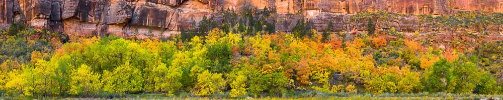 MT-20101105-161212-0054-Pano10-Utah-Zion-National-Park-Big-Bend-fall-color-panorama.jpg