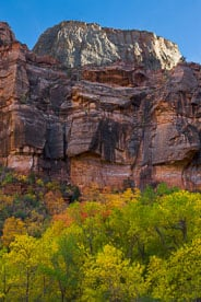 MT-20101105-161531-Utah-Zion-National-Park-Great-White-Throne-fall-color.jpg