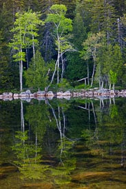 MT-20110607-062946-0013-Maine-Acadia-National-Park-Jordan-Pond-Reflection.jpg