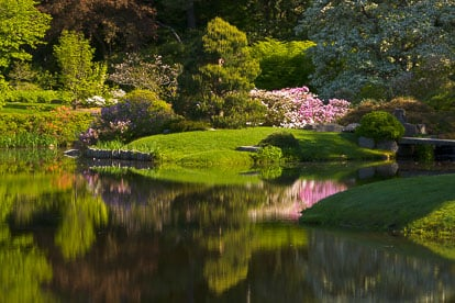 MT-20110607-081702-0021-Maine-Asticou-Azalea-Garden-reflection.jpg