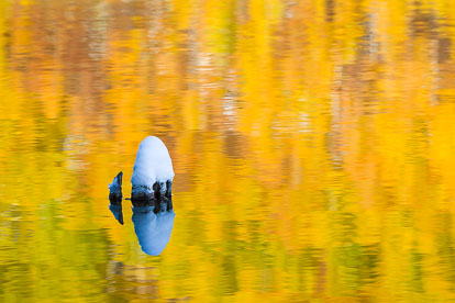 MT-20131005-124112-0218-Crosho-Lake-Routt-National-Forest-reflection-gold-aspen.jpg