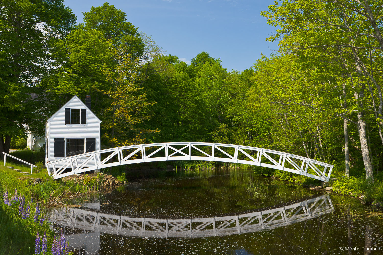 MT-20110608-101552-0086-Edit-Somesville-Bridge-reflection-spring.jpg