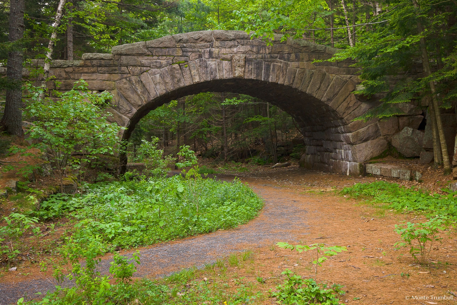 MT-20110610-071057-0011-Maine-Acadia-National-Park-Bubble-Pond-Bridge.jpg