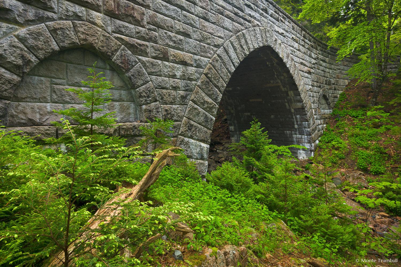 MT-20110612-075045-0006-Maine-Acadia-National-Park-Hemlock-Bridge.jpg