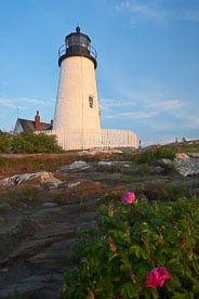 MT-20110616-052417-0014-Maine-Pemaquid-Point-Light-morning-flowers.jpg
