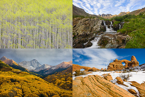 Collage of pictures showing pictures of different seasons.