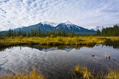 Puffy clouds and snow capped peaks are reflected in the Vermillion Lakes at Banff National Park, Alberta, Canada.