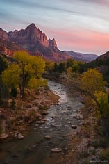 A peaceful fall sunset with The Watchman looming in the distance at Zion National Park in Utah.
