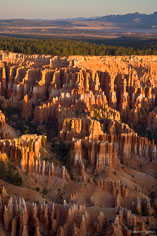 The distant view of trees and mountains contrasts with the rock spires the fill the canyon that is Bryce Canyon National Park in Utah.